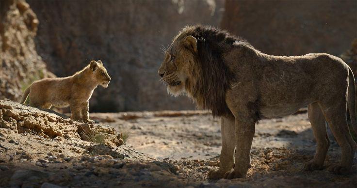 il re leone '