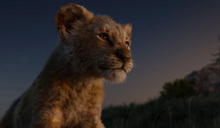 il re leone 333
