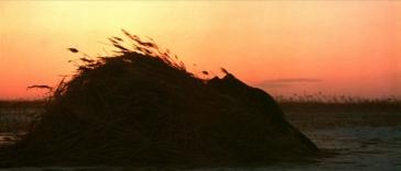 tramonto 1nevecanne