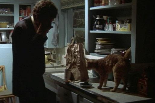 Elliot Gould e il suo gatto nella scena di apertura de Il lungo addio | re-movies